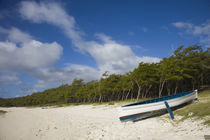 Boat on the beach, Anse Ally Beach, Anse Ally, Rodrigues Island, Mauritius by Panoramic Images