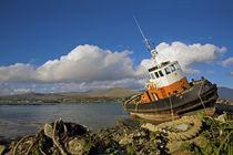 Ballynakilla Harbour, Bear Island, Beara Peninsula, County Cork, Ireland by Panoramic Images