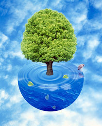 Lush green tree growing  by Panoramic Images
