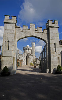 Blackrock Castle Observatory, Cork City, Ireland by Panoramic Images