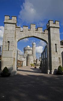 Blackrock Castle Observatory, Cork City, Ireland von Panoramic Images