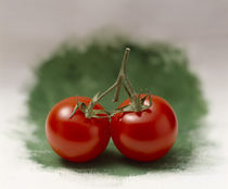Two red tomatoes side by side on selective focus green by Panoramic Images