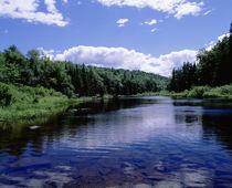 USA New York Adirondack State Park by Panoramic Images