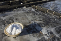 Bowl of salt in a salt pond, Tamarin, Black River District, Mauritius von Panoramic Images