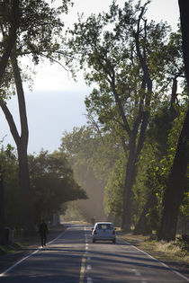 Car on the road, Cafayate, Calchaqui Valleys, Salta Province, Argentina by Panoramic Images