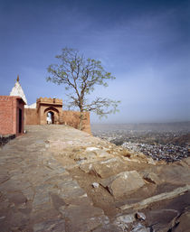 View from Temple of Monkeys, Jaipur, Rajasthan, India by Panoramic Images