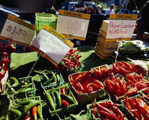 Chilli peppers in a market stall, Grand Rapids, Kent County, Michigan, USA by Panoramic Images