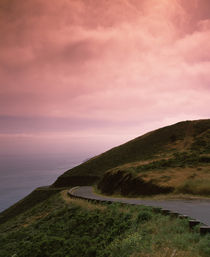 Road at the hillside, San Francisco, California, USA by Panoramic Images