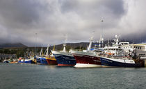 Fishing Boats in the Harbour by Panoramic Images