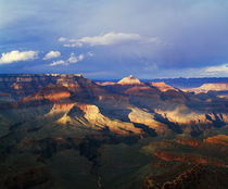 View of Grand Canyon from Shoshone Point von Panoramic Images
