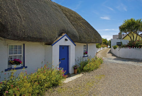 traditional thatched cottage kilmore quay county wexford ireland bild als poster und. Black Bedroom Furniture Sets. Home Design Ideas