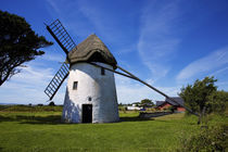 Thatched Windmill, Tacumshane, County Wexford, Ireland von Panoramic Images