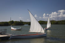 Traditional pirogue boats in the sea, Blue Bay, Mauritius von Panoramic Images