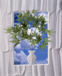 White plaster frame with white plaster vase von Panoramic Images