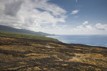 Lava field at the coast, Piton de la Fournaise, Le Grand Brule, Reunion Island by Panoramic Images