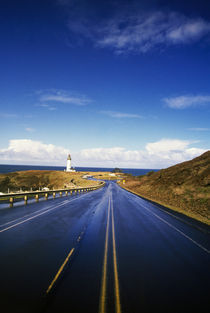 Road To Yaquina Head Lighthouse by Panoramic Images