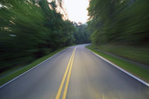 Road winding through forest at dusk von Panoramic Images