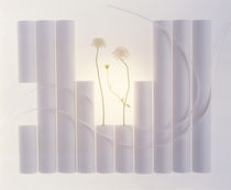 Various sized white cylinders with two flowers and floating ribbons by Panoramic Images