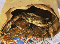 Close-up of steamed crabs in a paper bag, Maryland, USA by Panoramic Images