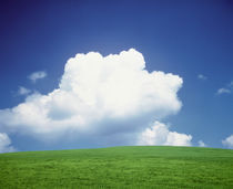 Clouds over a grassland by Panoramic Images