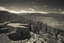 Ruins of a fortress by Panoramic Images