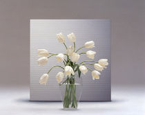 Bouquet of white tulips  von Panoramic Images