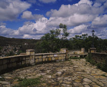 Trees near a stone walkway, Diamantina, Minas Gerais, Brazil von Panoramic Images