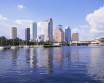 USA, Florida, Tampa, Office buildings in Tampa von Panoramic Images