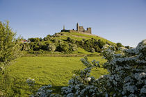 Rock of Cashel von Panoramic Images