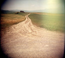 Dirt road passing through agricultural fields, Italy by Panoramic Images