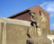 Angel's statue in front of a building, Egypt von Panoramic Images