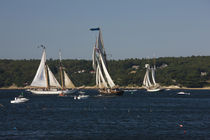 Schooner leaving harbor for a race by Panoramic Images