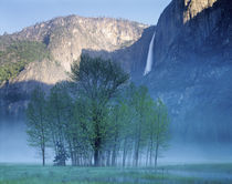 USA, California, Yosemite National Park, Waterfall falling from the mountain von Panoramic Images