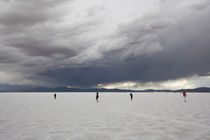 Tourists on a salt flat, Salinas Grandes, Jujuy Province, Argentina von Panoramic Images