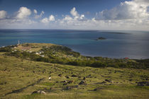 High angle view of a village at the coast by Panoramic Images