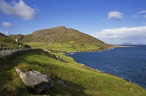 Cod's Head,, Beara Peninsula, County Cork, Ireland by Panoramic Images