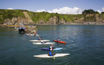 Canoes in Fishing Harbour, Boatstrand, Copper Coast, County Waterford, Ireland by Panoramic Images