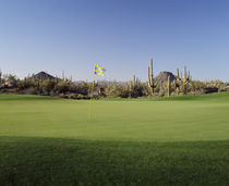 Golf flag in a golf course by Panoramic Images