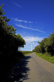 Windfarm, Bridgetown, County Wexford, Ireland by Panoramic Images