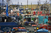 Helvick Fishing Harbour by Panoramic Images
