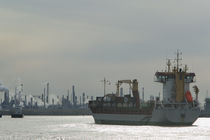 Industrial ship at a port, Port Of Houston, La Porte, Houston, Texas, USA by Panoramic Images