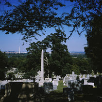 Tombstones in a graveyard, Arlington National Cemetery, Washington DC, USA by Panoramic Images