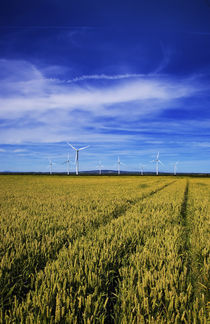 Windfarm Beyond Wheat Field, Bridgetown, County Wexford, Ireland by Panoramic Images