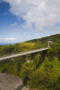 Suspension bridge in a valley, Pont des Anglais, St. Anne, Reunion Island von Panoramic Images