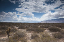 Clouds over a desert by Panoramic Images