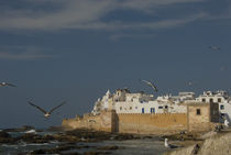 Ramparts of the ancient Skala du Port in the coastal city of Essaouira, Morocco von Panoramic Images