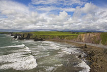 Ballydowane Cove on the Copper Coast, County Waterford, Ireland by Panoramic Images