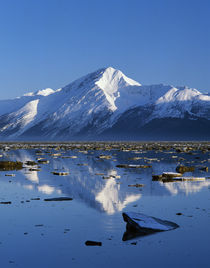 Chugach Mountains reflected between ice floes on Turnagain Arm, Alaska, USA. by Panoramic Images