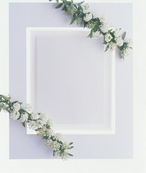 White plaster frame with greenery and white flowers in each corner by Panoramic Images