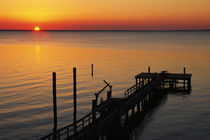 Silhouetted ocean pier at sunrise, Maryland, USA. by Panoramic Images